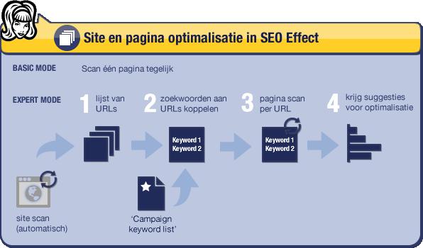 Stappen SEO Effect site optimalisatie